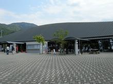 DSCN6022