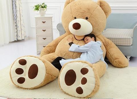 bear-16217-1.-t2