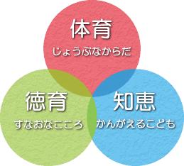 line-image