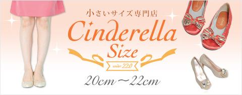 2012r_cinderella_b2