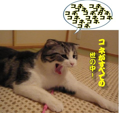 20120829_niseitarento_07