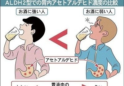 japaneseclass.jp-f87c3