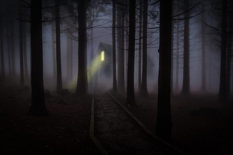 foggy-545838_1280-1024x682