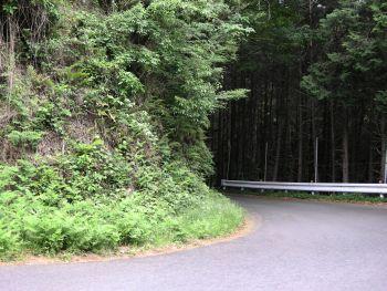 20110510山道1