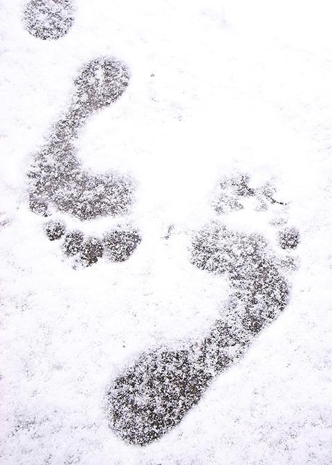 snowasi