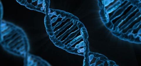 DNA-615x288