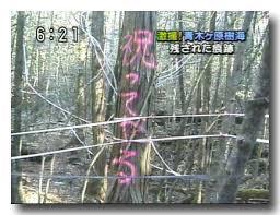 ダウンロード (93)