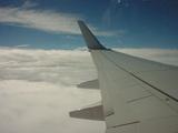 雲海と羽1