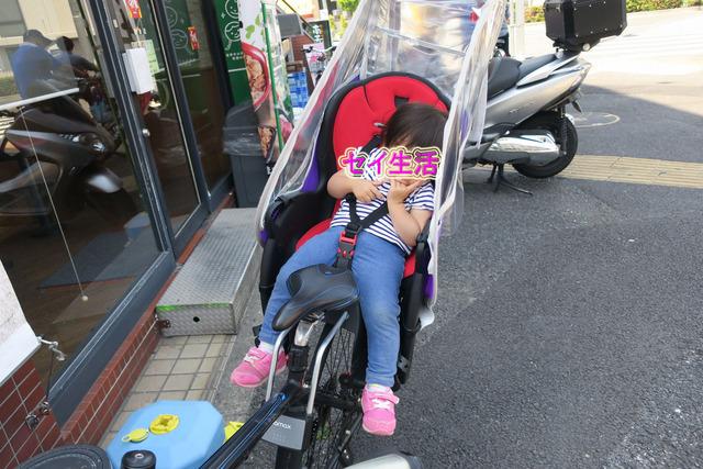 そらまめ祭り (29)