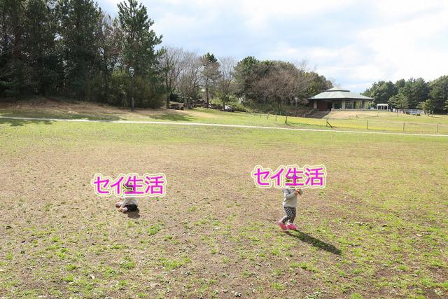 葛西臨海公園でテント (10)
