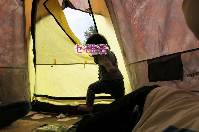 葛西臨海公園でテント (15)