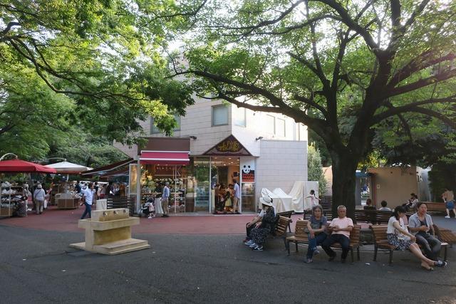 上野動物園 (19)