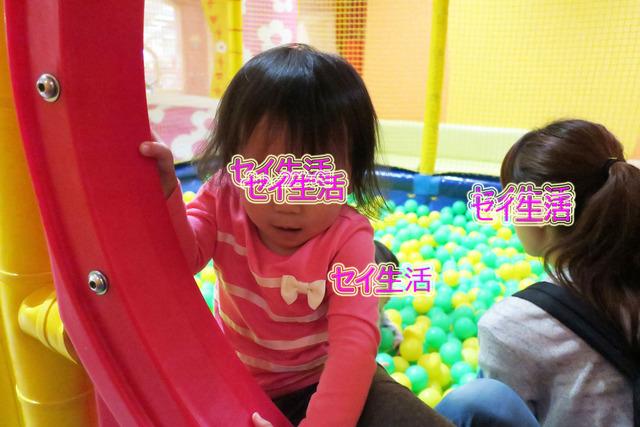 小さな動物園 (10)
