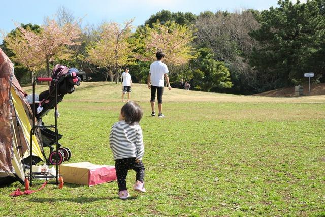 葛西臨海公園でテント (9)