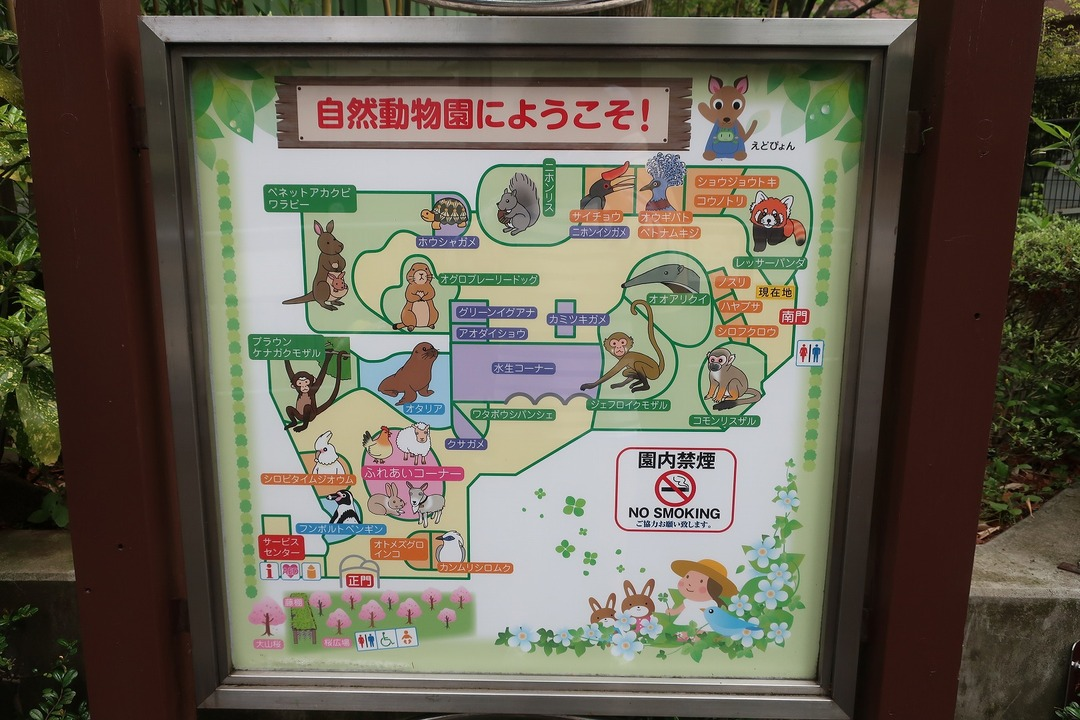 江戸川自然動物園 (3)