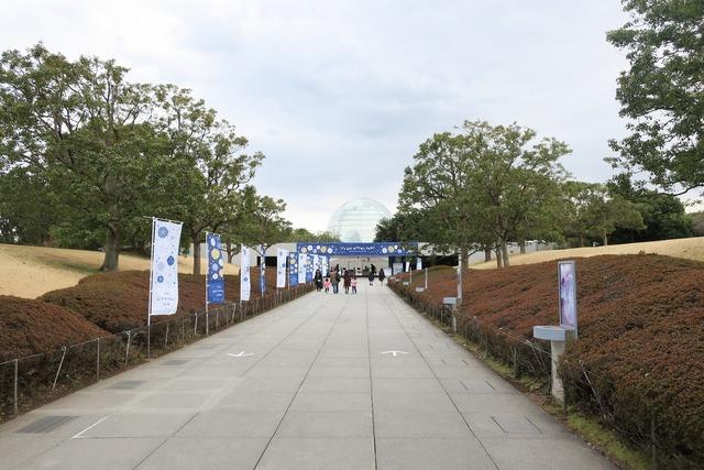 葛西臨海公園水族館 (2)