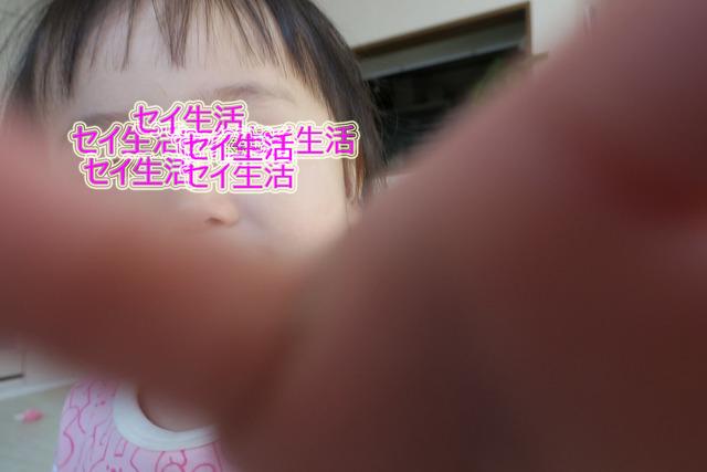 子育て (1)