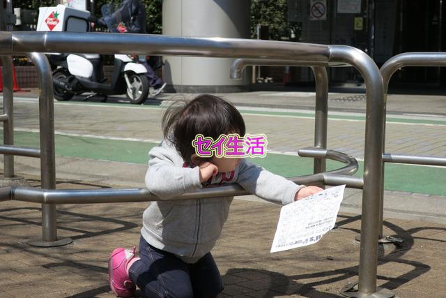 砂町銀座 (8)