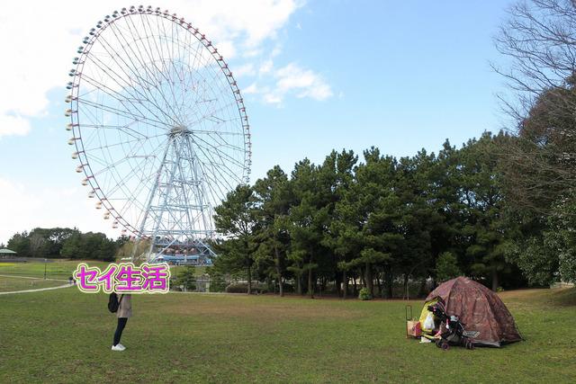 葛西臨海公園でテント (6)