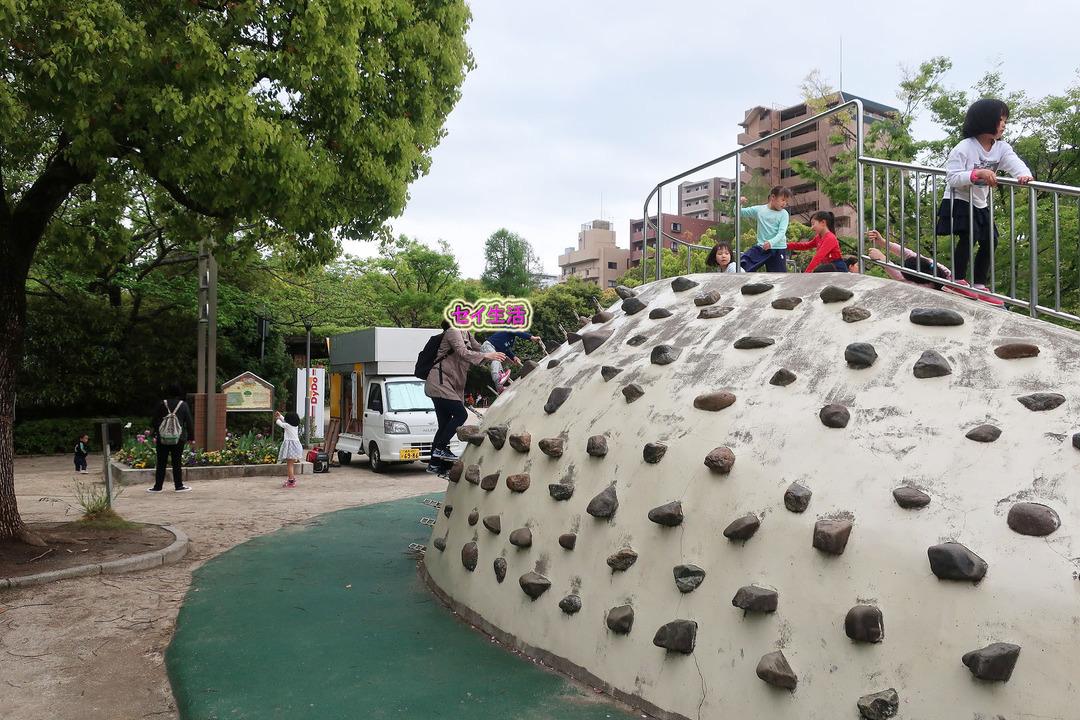 江戸川自然動物園 (19)