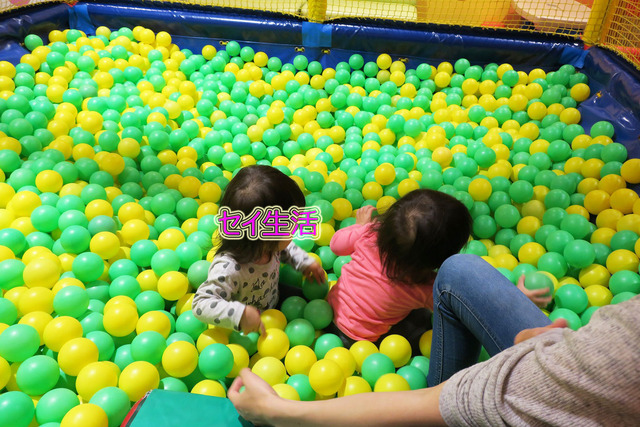 小さな動物園 (9)
