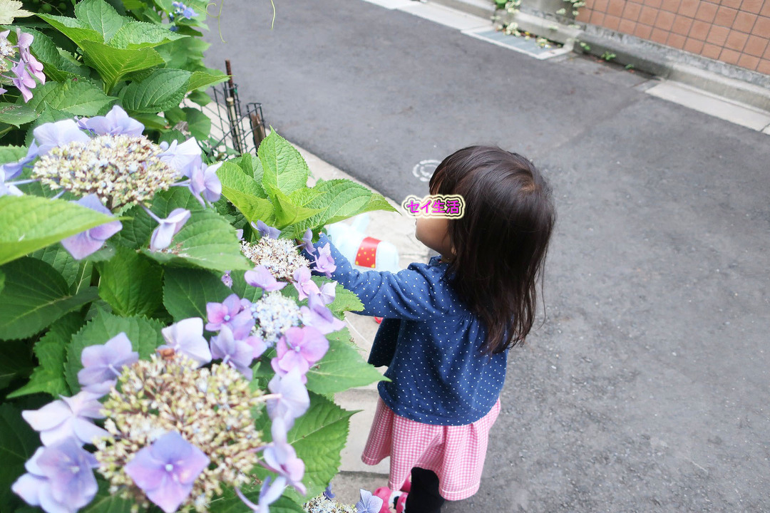 ママは名古屋 (4)