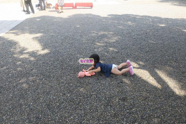 富岡八幡宮 (6)