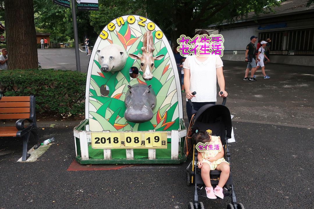 上野動物園 (18)
