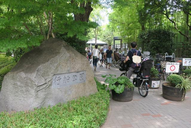 江戸川金魚まつり (2)