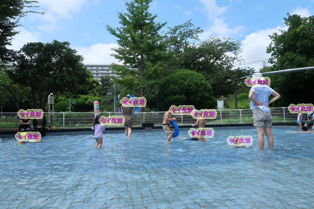 じゃぶじゃぶ池 (1)