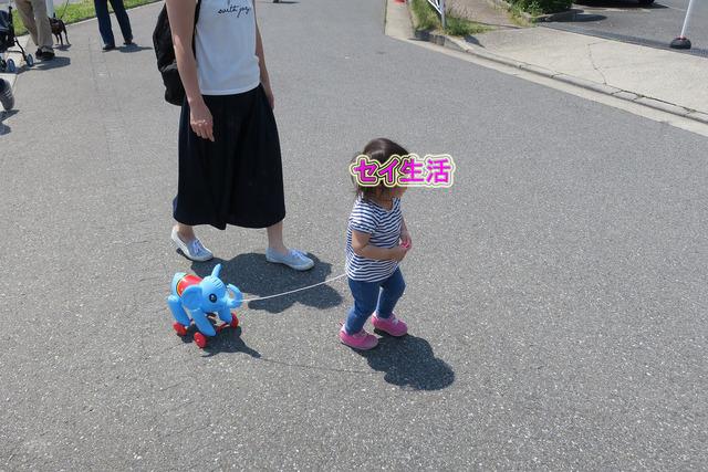 そらまめ祭り (23)