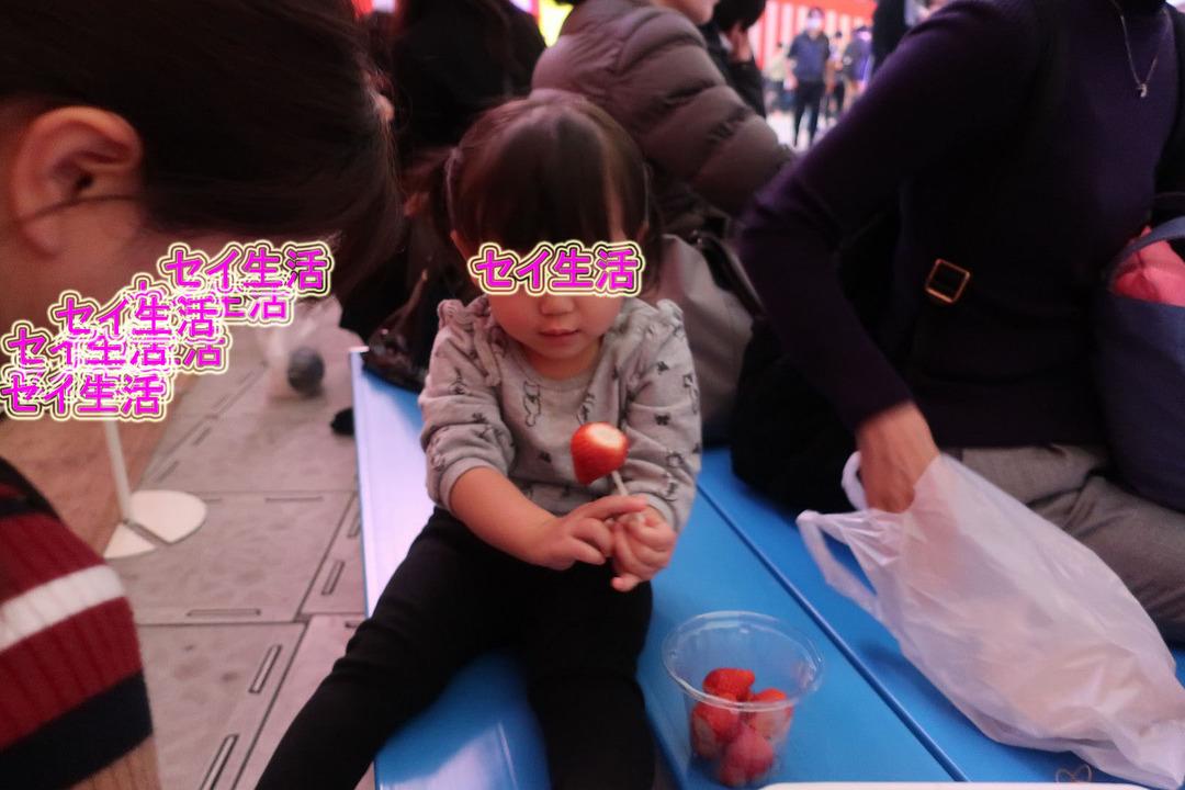 ふるさと祭り2018 (12)