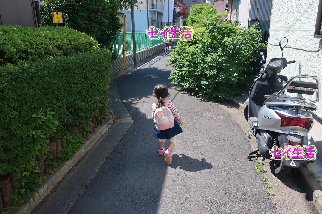 近所で過ごす休日 (1)