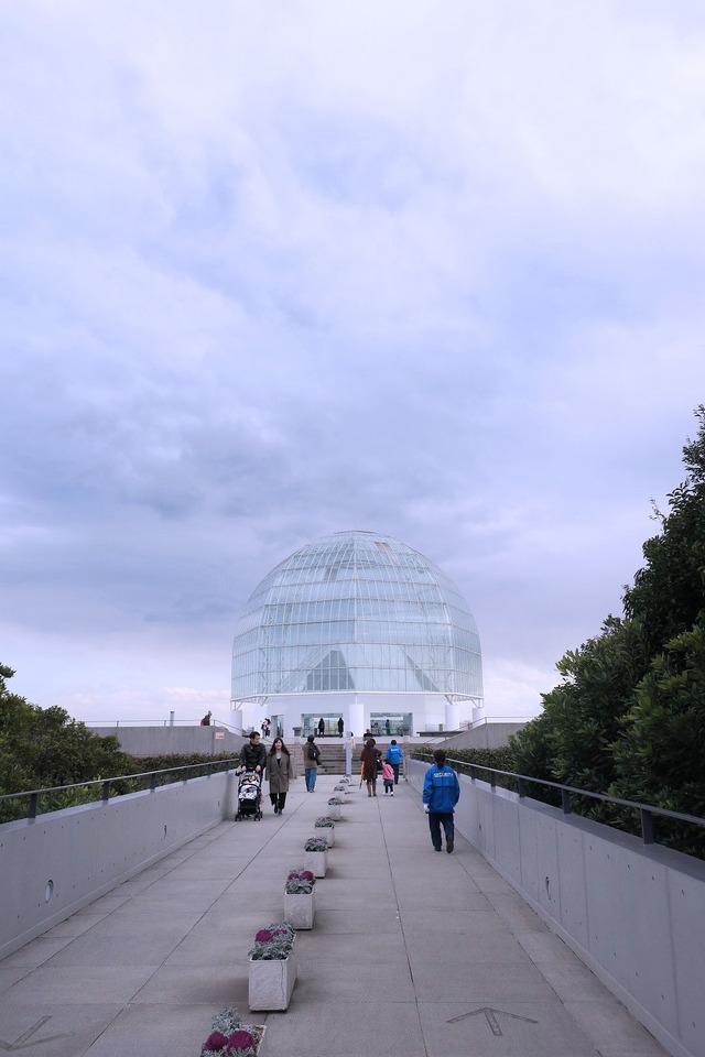 葛西臨海公園水族館 (6)
