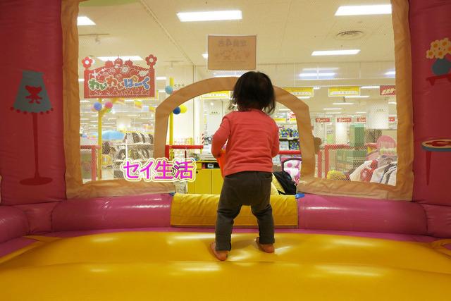 小さな動物園 (3)