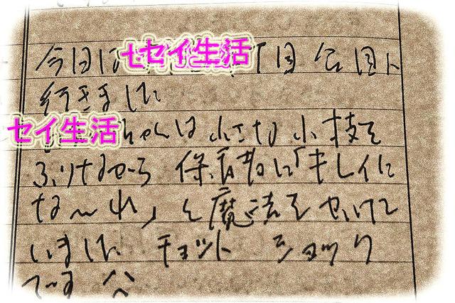 DSC_2494_1 のコピー