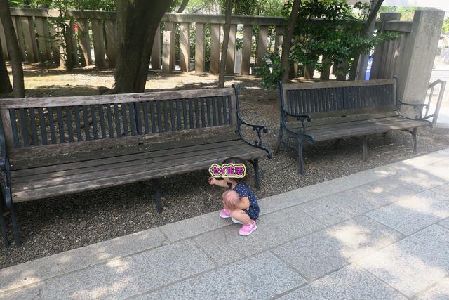 富岡八幡宮 (4)