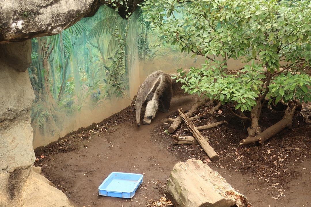 江戸川自然動物園 (5)