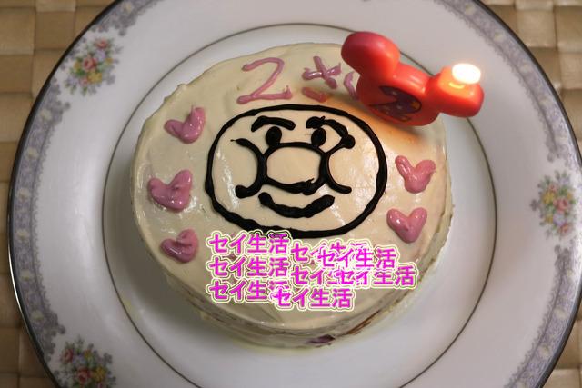 2歳の誕生日 (7)