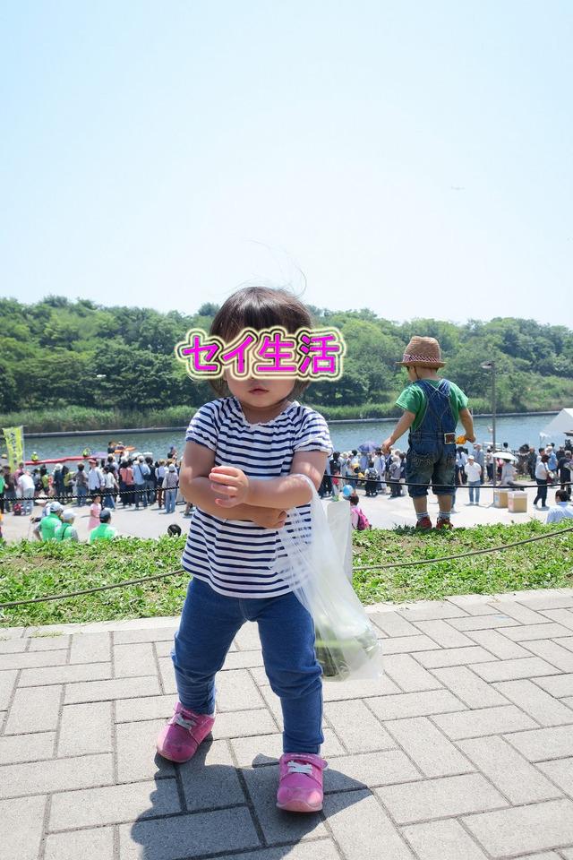 そらまめ祭り (24)