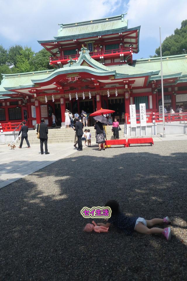 富岡八幡宮 (7)