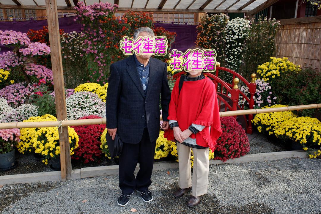 亀戸天神で七五三 (12)