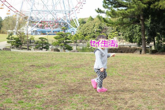 葛西臨海公園でテント (11)