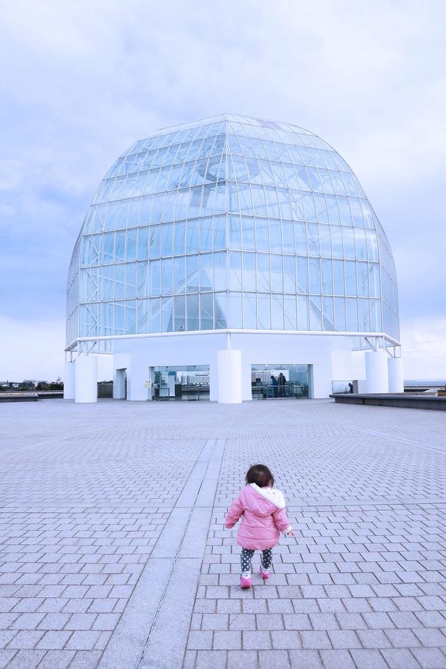 葛西臨海公園水族館 (7)