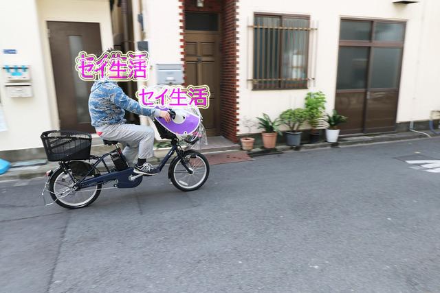 ぎゅっとみに (1)