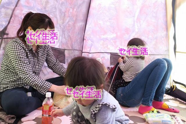 葛西臨海公園でテント (13)
