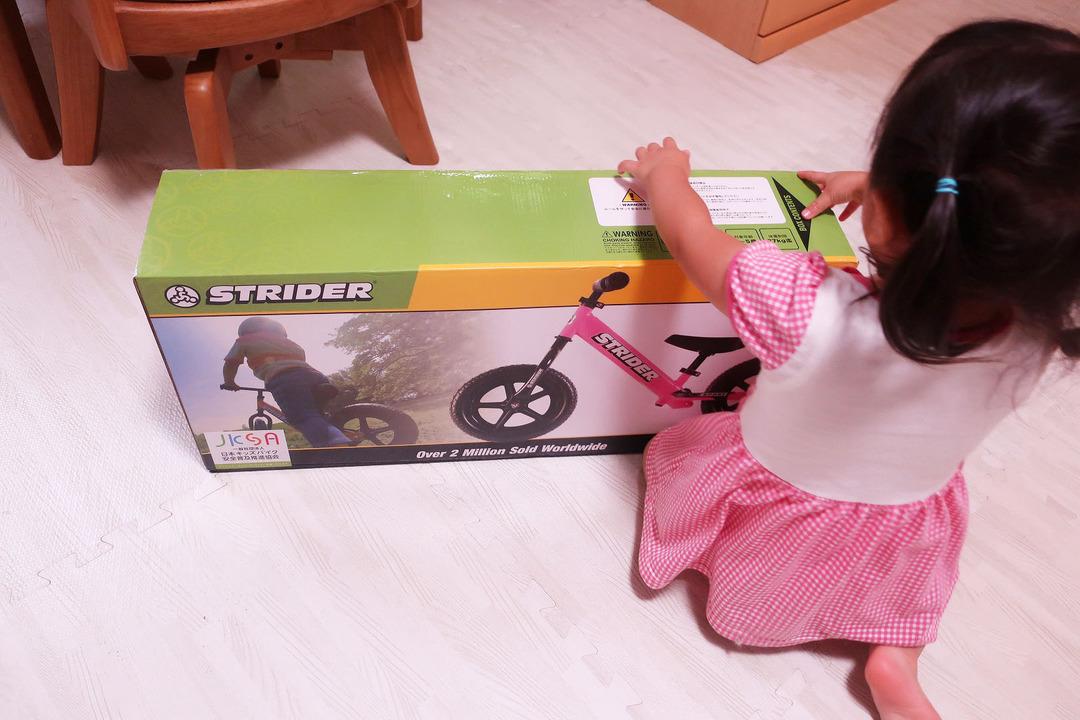 ストライダー (1)