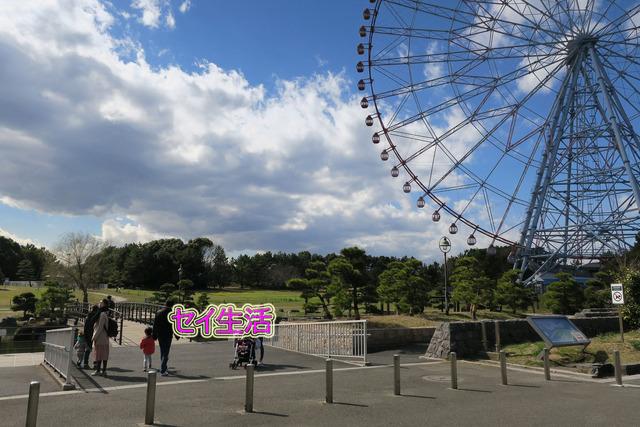 葛西臨海公園でテント (3)