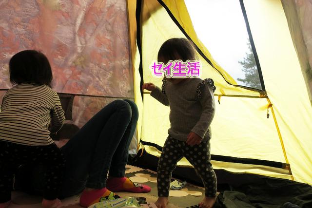 葛西臨海公園でテント (12)
