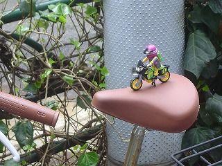 自転車の上